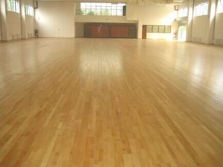 体育运动地板